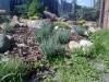 ogrodnictwo-3